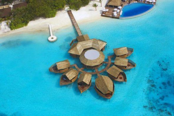 Amazing Lily Hotel Maldives