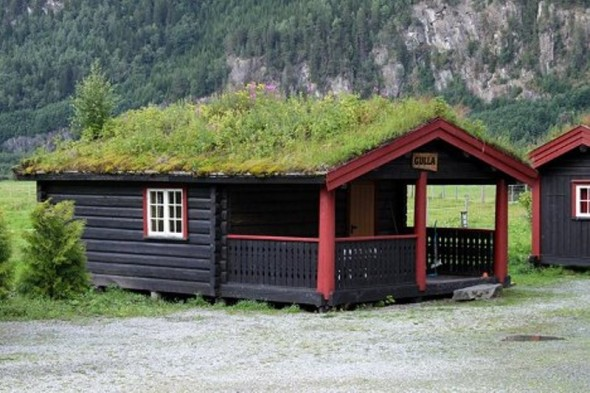 Scandinavian Grass Roofs