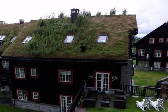 Scandinavian Green Roofs