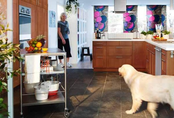 IKEA Kitchen Design with dog