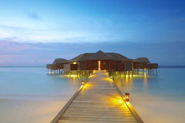 Exotic Lily Hotel Maldives