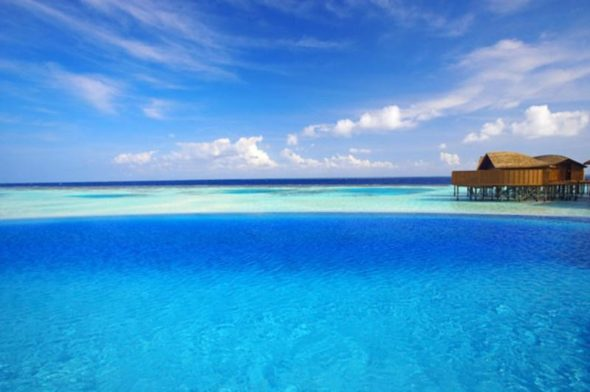 Lily Hotel Maldives - Blue Sea