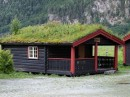 Scandinavian Grass Roofs