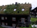 Scandinavian Green Roofs